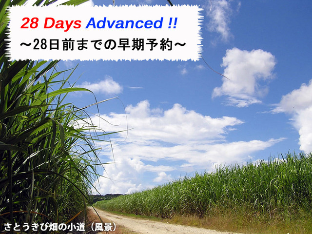 【Early Save】 28 days in advance discounts(with breakfast)