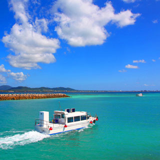 【Taketomi Island Tour!】 Taketomi Island Water Buffalo cart ride‧Glass bottom boat sightseeing tour<Ta-1>