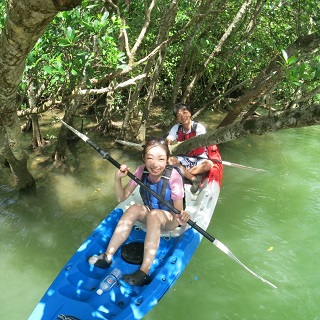 Mangrove Kayaking Adventure Tour