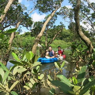 【Limit to the period 2/9~4/15、5/18~6/30、9/1~11/30・4 pax~9 pax group promotion】Mangrove Kayaking Adventure