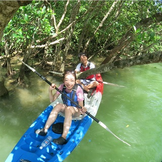 【Group discount for groups from 10 people】 Mangrove Kayaking Adventure Tour