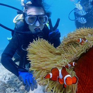 Learn with a professional instructor!! Watch the famous clown fish!! A diving experience by boat!