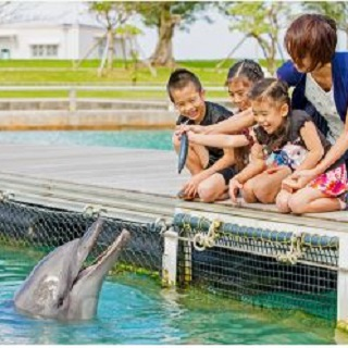 Let's learn about animals! Mogu mogu picnic at【Motobu Genki Village】