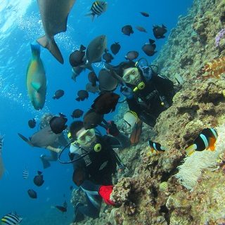 Boat Experience Dive & Snorkeling where you can observe tropical fish flocks and coral reefs 【Morning / Half day · Over 2 people underwater photograph free · Free pick up available】