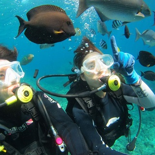 Boat diving with possibility of appreciating shoals of tropical fishes and coral reefs【Morning・Half-day・Free picture for 2 or more people・Free transportation available】