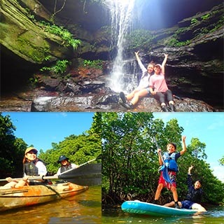 【Iriomote Island】【Half-day】Head for a lucky waterfall! Canoe or SUP tour through Iriomote-Jim's's mangrove forests!