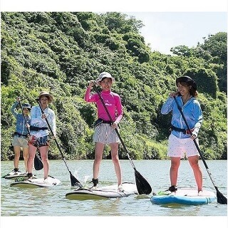 Daily departures! Available from 1 participant! Mangrove SUP Tour. Easy access, held in the central area of Okinawa.
