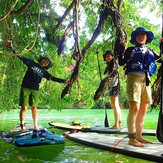 Mangrove SUP Tour. Good Deal for 4 people or more♪ Easy access, held in the central area of Okinawa【Group discount】