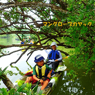 Mangrove Kayak Tour. 1 child can experience for free♪ Easy access, held in the central area of Okinawa.【Family discount】
