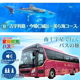 B: Go by 3 line seat bus with reclining seats! Kouri Island, Nakijin Castle Ruins and Churaumi Aquarium course.