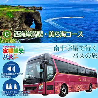 C: Go by 3 line seat bus with reclining seats! Okinawa West Coast and Churaumi Aquarium course.