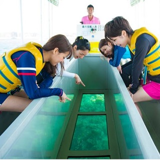 Let's Observe the colorful Coral Forest & Marine Fauna from the Glass Boat ♪