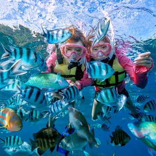 ★Snorkelling Combo (2 times)★Blue Cave & clown fish attraction spot★Fish feeding experience★
