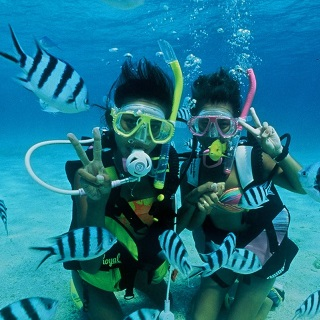 【Sesoko Island Diving Experience】 Be enchanted by the coral reefs and colourful ocean fish!