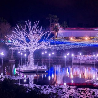 【With discount for advance payment】Southeast Botanical Gardens ★ Promenade of light illumination ★