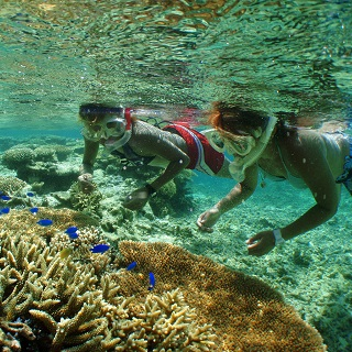「Beautiful Sea」Half Day Snorkelling Tour