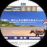 Okinawa hotel search site