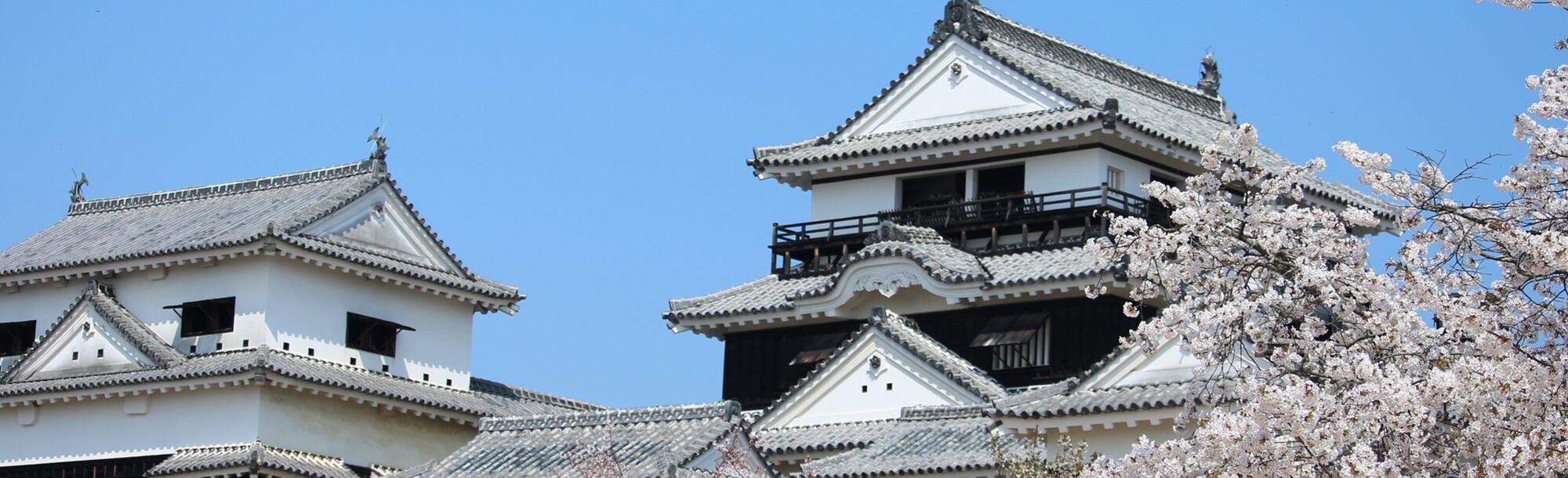 愛媛県観光