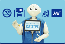 OTS Rent-a-car services
