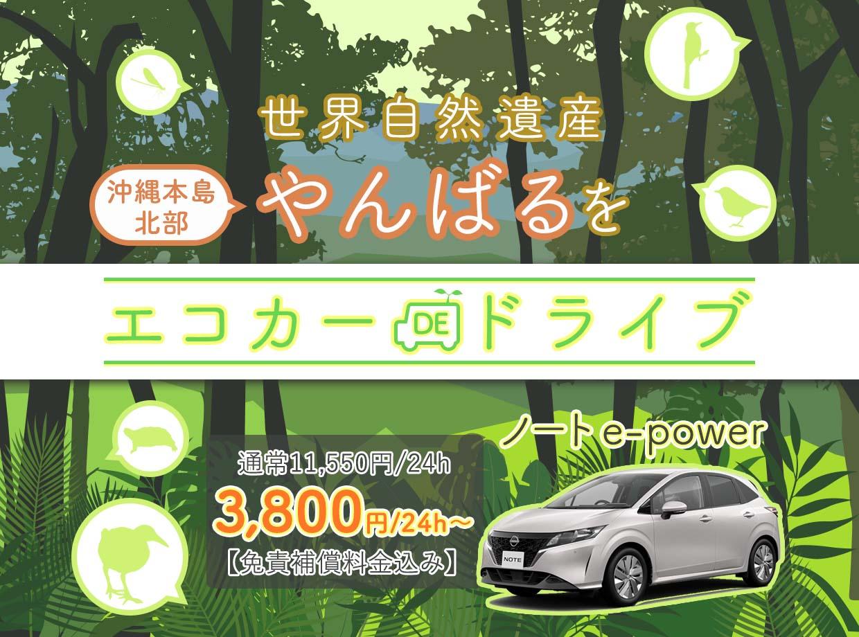 世界自然遺産やんばる エコカーdeドライブ