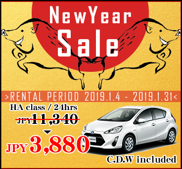 【Okinawa Main Island】2019 New Year Sale