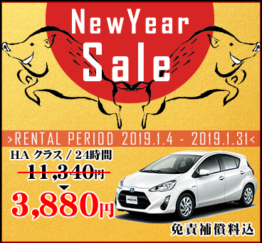 【沖縄本島】 2019 New Year Sale