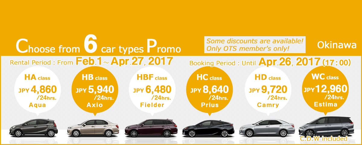 Choose from 6 car types promo