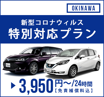【沖縄】新型コロナウィルス特別対応プラン