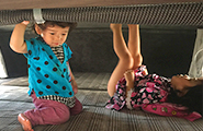 Bed fall prevention net