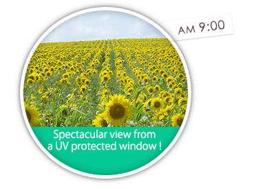 Spectacular view from a UV protected window !